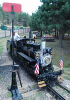 Engine #10 standing at switch